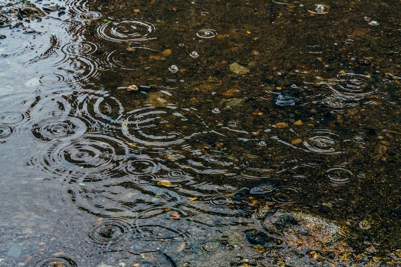 雨 ぬれた路面 雨天